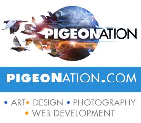 PIGEONATION2